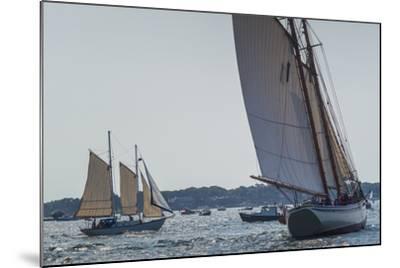 USA, Massachusetts, Cape Ann, Gloucester, America's Oldest Seaport, Annual Schooner Festival-Walter Bibikow-Mounted Photographic Print