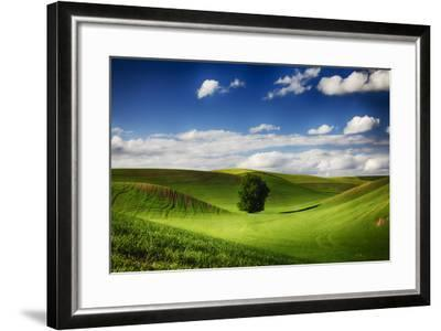 Washington, Colfax, Rolling Wheat Fields with Lone Tree-Terry Eggers-Framed Photographic Print