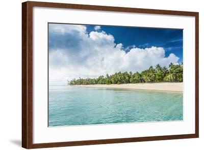 Palm Fringed White Sand Beach in Ha'Apai, Ha'Apai Islands, Tonga, South Pacific-Michael Runkel-Framed Photographic Print