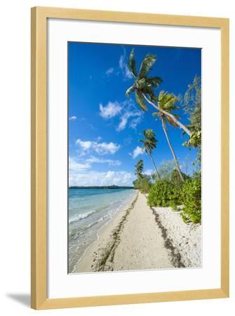 Palm Fringed White Sand Beach on an Islet of Vava'U, Tonga, South Pacific-Michael Runkel-Framed Photographic Print