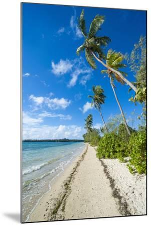 Palm Fringed White Sand Beach on an Islet of Vava'U, Tonga, South Pacific-Michael Runkel-Mounted Photographic Print