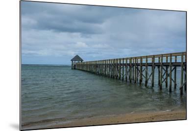 Long Wooden Pier, Coral Coast, Viti Levu, Fiji, South Pacific-Michael Runkel-Mounted Photographic Print