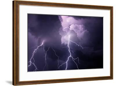 USA, Tennessee. Composite of Cloud-To-Cloud Lightning Bolts-Jaynes Gallery-Framed Photographic Print