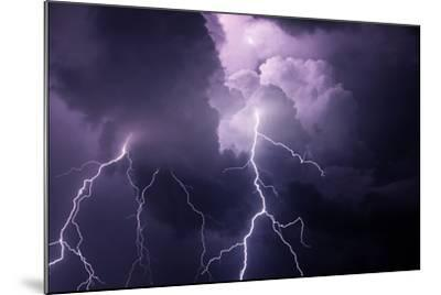 USA, Tennessee. Composite of Cloud-To-Cloud Lightning Bolts-Jaynes Gallery-Mounted Photographic Print