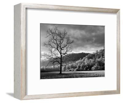 North Carolina, Great Smoky Mountains National Park, Storm Clearing at Dawn in Cataloochee Valley-Ann Collins-Framed Photographic Print