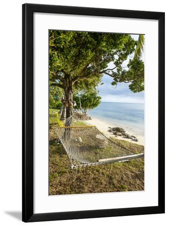 Hammock on a Beach in Ha'Apai, Tonga, South Pacific-Michael Runkel-Framed Photographic Print