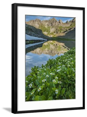 USA, Colorado, San Juan Mountains. Clear Lake Reflection and Marigolds-Jaynes Gallery-Framed Photographic Print