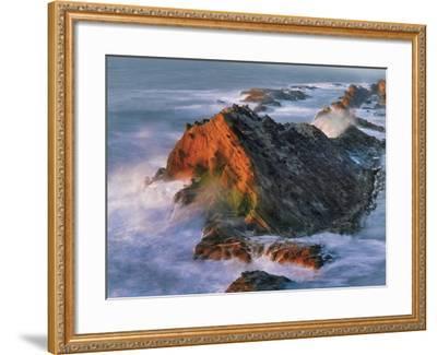 USA, Oregon, Shore Acres State Park. Sunset Light on Ocean Shore Cliffs-Jaynes Gallery-Framed Photographic Print