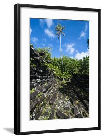 Ruined City Nan Madol, Pohnpei, Micronesia, Central Pacific-Michael Runkel-Framed Photographic Print