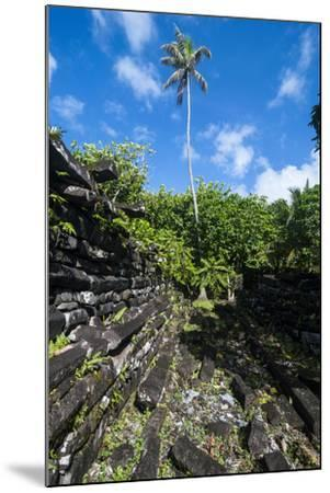 Ruined City Nan Madol, Pohnpei, Micronesia, Central Pacific-Michael Runkel-Mounted Photographic Print
