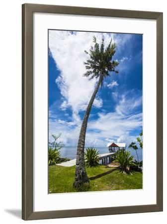 Boat Pier in the North of the Island of Babeldaob, Palau, Central Pacific-Michael Runkel-Framed Photographic Print
