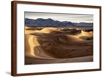 USA, California, Death Valley National Park, Mesquite Flat Dunes after Rain-Ann Collins-Framed Photographic Print
