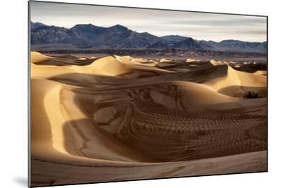 USA, California, Death Valley National Park, Mesquite Flat Dunes after Rain-Ann Collins-Mounted Photographic Print