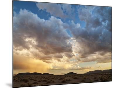 USA, California, Mojave National Preserve. Desert Rain Squall at Sunset-Ann Collins-Mounted Photographic Print
