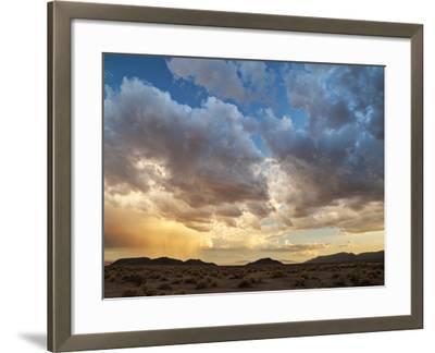 USA, California, Mojave National Preserve. Desert Rain Squall at Sunset-Ann Collins-Framed Photographic Print