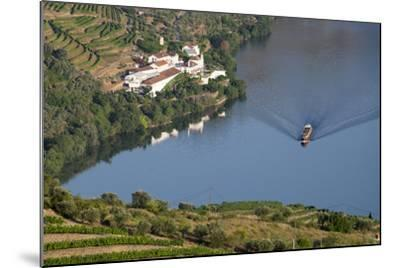 Douro Valley, Douro River, Porto. Valley Is Lined with Steeply Sloping Hills and Vineyards-Emily Wilson-Mounted Photographic Print