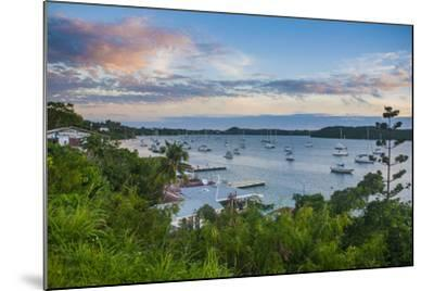 The Bay of Neiafu after Sunset, Vava'U Islands, Tonga, South Pacific-Michael Runkel-Mounted Photographic Print