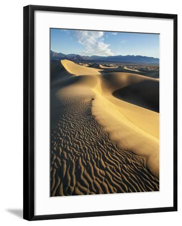USA, California, Death Valley National Park. Early Morning Sun Hits Mesquite Flat Dunes-Ann Collins-Framed Photographic Print