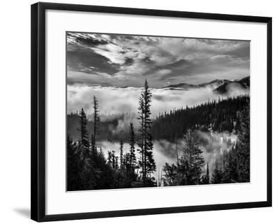 Washington, Olympic National Park. View Northeast from Road to Hurricane Ridge-Ann Collins-Framed Photographic Print