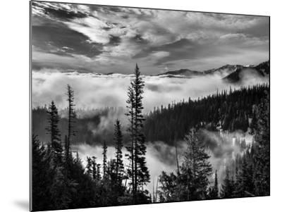 Washington, Olympic National Park. View Northeast from Road to Hurricane Ridge-Ann Collins-Mounted Photographic Print