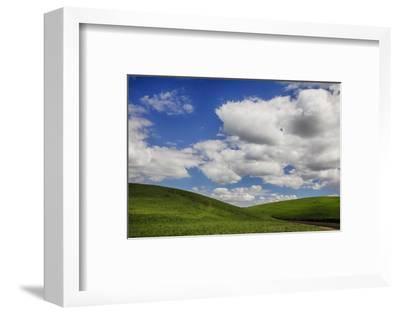 Washington, Palouse Country, Backroad Through the Green Fields of Washington-Terry Eggers-Framed Photographic Print