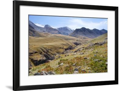 Mongolia, Bayan Logia Province, Gashuun Suhayt. River Valley-Emily Wilson-Framed Photographic Print
