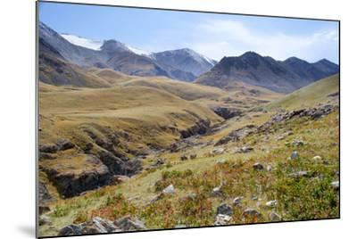 Mongolia, Bayan Logia Province, Gashuun Suhayt. River Valley-Emily Wilson-Mounted Photographic Print