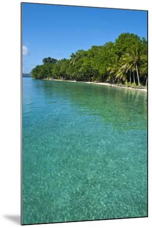 Beach at the Aore Islet before the Island of Espiritu Santo, Vanuatu, South Pacific-Michael Runkel-Mounted Photographic Print
