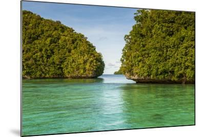 Little Rock Islet in the Famous Rock Islands, Palau, Central Pacific-Michael Runkel-Mounted Photographic Print