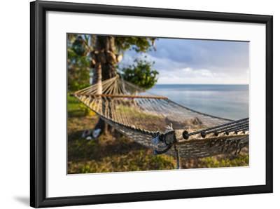 Hammock on a Beach in Ha'Apai Islands, Tonga, South Pacific-Michael Runkel-Framed Photographic Print