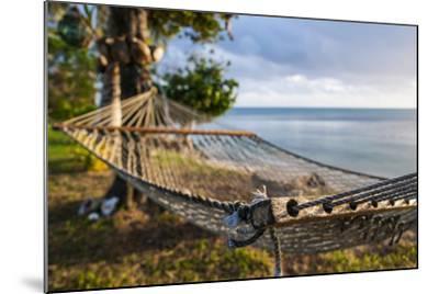 Hammock on a Beach in Ha'Apai Islands, Tonga, South Pacific-Michael Runkel-Mounted Photographic Print