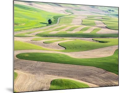 Washington, Whitman County. Aerial Photography in the Palouse Region of Eastern Washington-Julie Eggers-Mounted Photographic Print