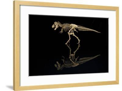 USA, Tennessee. T-Rex Skeleton Replica Reflection-Jaynes Gallery-Framed Photographic Print