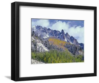 USA, Colorado, Uncompahgre National Forest, Fall Snow on Ophir Needles Above Aspen and Conifers-John Barger-Framed Photographic Print