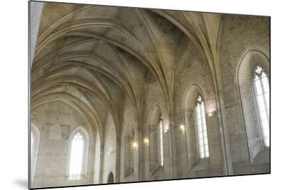 Southern France, Vaucluse, Provence, Avignon, Views in and around the Papal Palace-Emily Wilson-Mounted Photographic Print