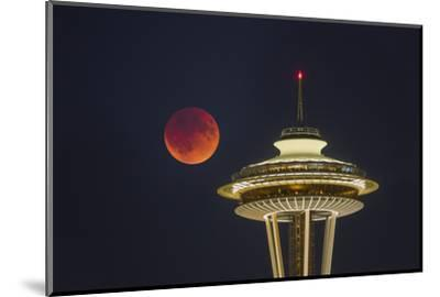 Two Image Composite to Account for Brightness of the Needle-Gary Luhm-Mounted Photographic Print