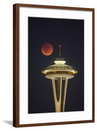 Two Image Composite to Account for Brightness of the Needle-Gary Luhm-Framed Photographic Print