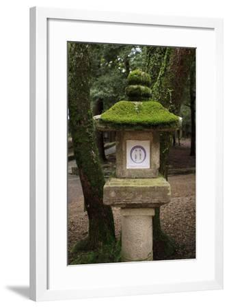 Kasuga-Taisha Shrine-Paul Dymond-Framed Photographic Print