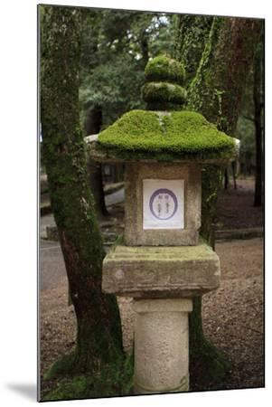 Kasuga-Taisha Shrine-Paul Dymond-Mounted Photographic Print