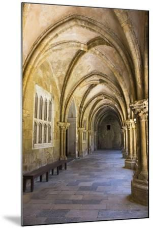 Portugal, Coimbra. Old Cathedral Cloister. Archways, Walking Paths, Courtyard-Emily Wilson-Mounted Photographic Print