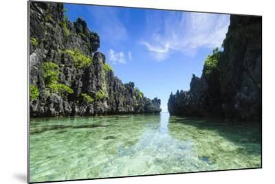 Crystal Clear Water in the Bacuit Archipelago, Palawan, Philippines-Michael Runkel-Mounted Photographic Print