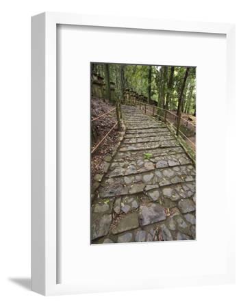 A Cobble Stone Path Leading Through the Grounds of Kasuga Taisha Shrine in Nara, Japan-Paul Dymond-Framed Photographic Print