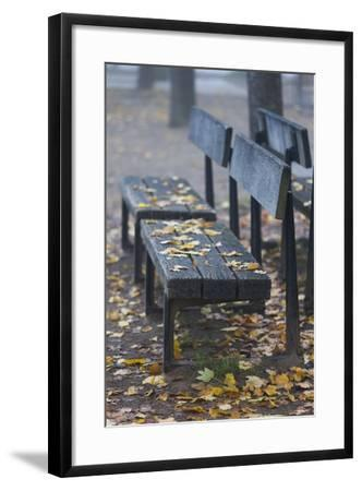 Germany, Rhineland-Pfalz, Speyer, Domgarten, Cathedral Park with Morning Fog-Walter Bibikow-Framed Photographic Print