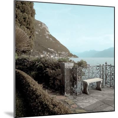Lake Vista IV-Alan Blaustein-Mounted Premium Photographic Print