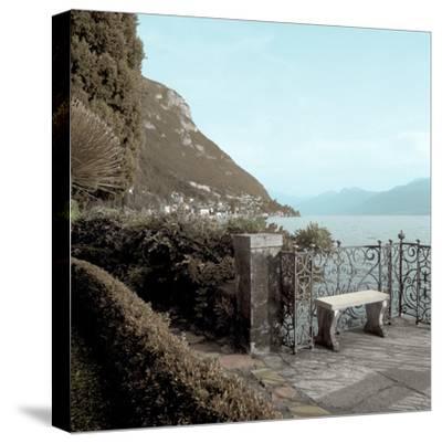 Lake Vista IV-Alan Blaustein-Stretched Canvas Print