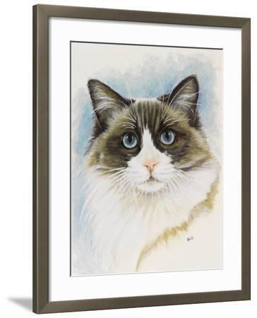 Ragdoll-Barbara Keith-Framed Giclee Print
