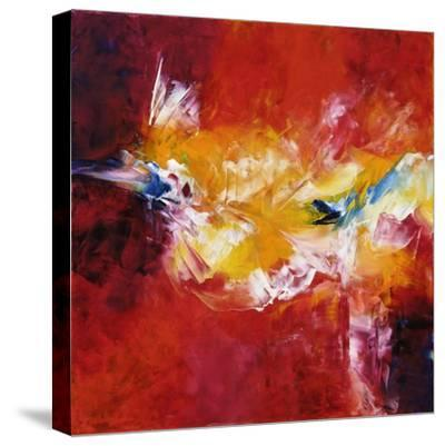 Believe in Magic-Aleta Pippin-Stretched Canvas Print