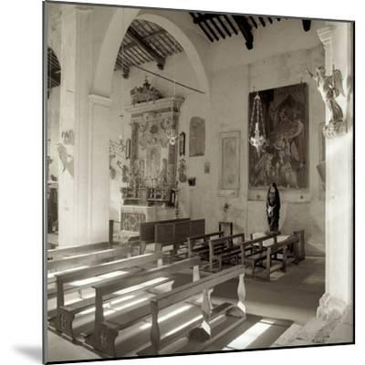 Banogregio I-Alan Blaustein-Mounted Photographic Print
