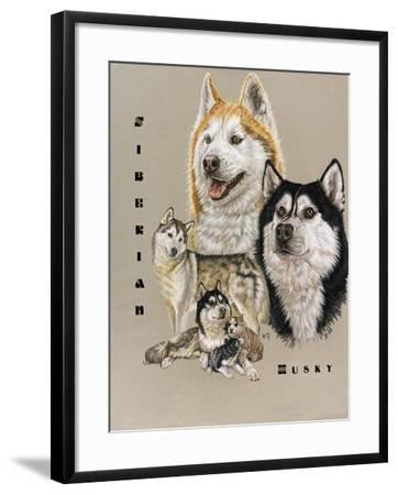 Siberian Husky-Barbara Keith-Framed Giclee Print