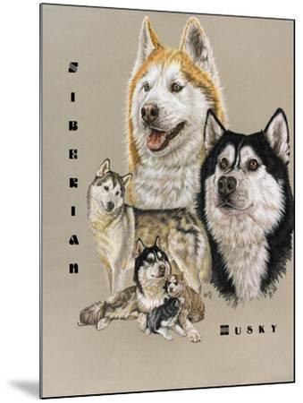 Siberian Husky-Barbara Keith-Mounted Giclee Print